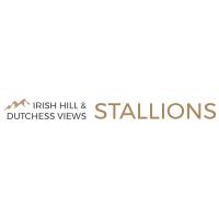 Irish Hill & Dutchess Views Stallions