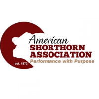 American Shorthorn Association