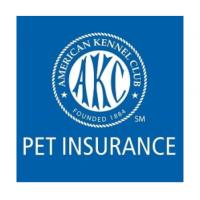 AKC Pet Insurance