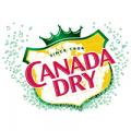 Canada Dry TV Commercials