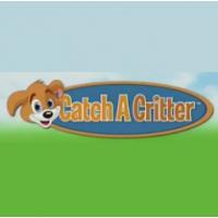 Catch A Critter