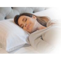 Hotel Plush Pillow