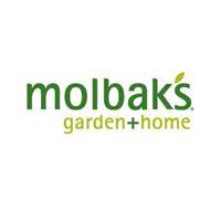Molbak's
