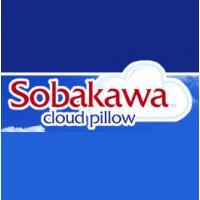 Sobakawa Pillows