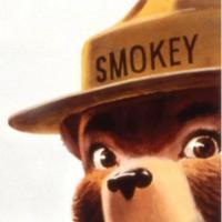 Smokey Bear Campaign