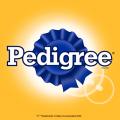 Pedigree TV Commercials