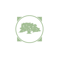 The Banyan Tree Project