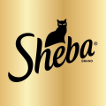 Sheba TV Commercials