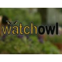 Watch Owl