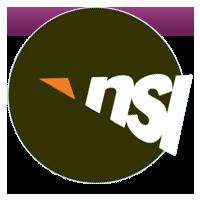 NSI International Inc.